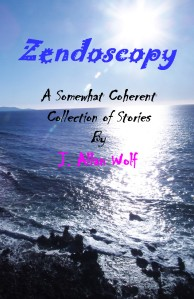 Zendoscopy Front Cover